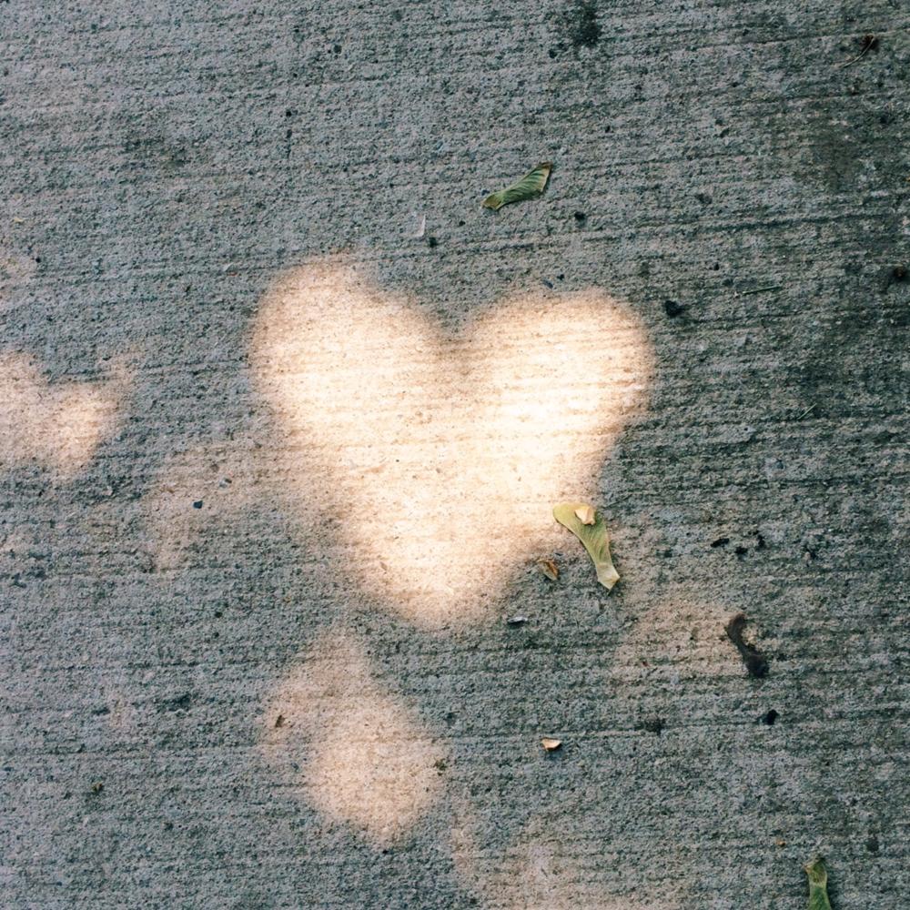 Heart 17 - Light