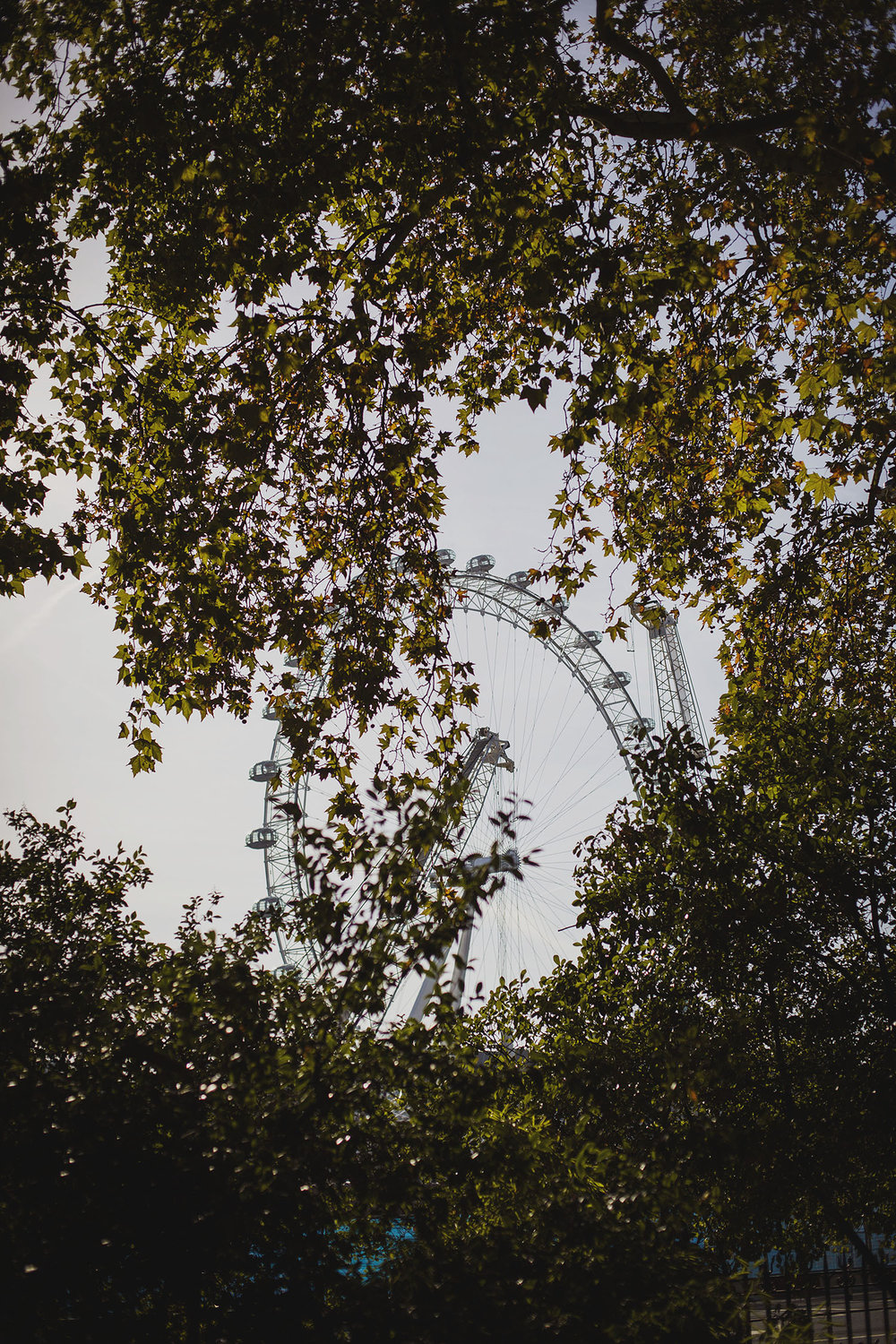 london eye corinthia hotel wedding photographer