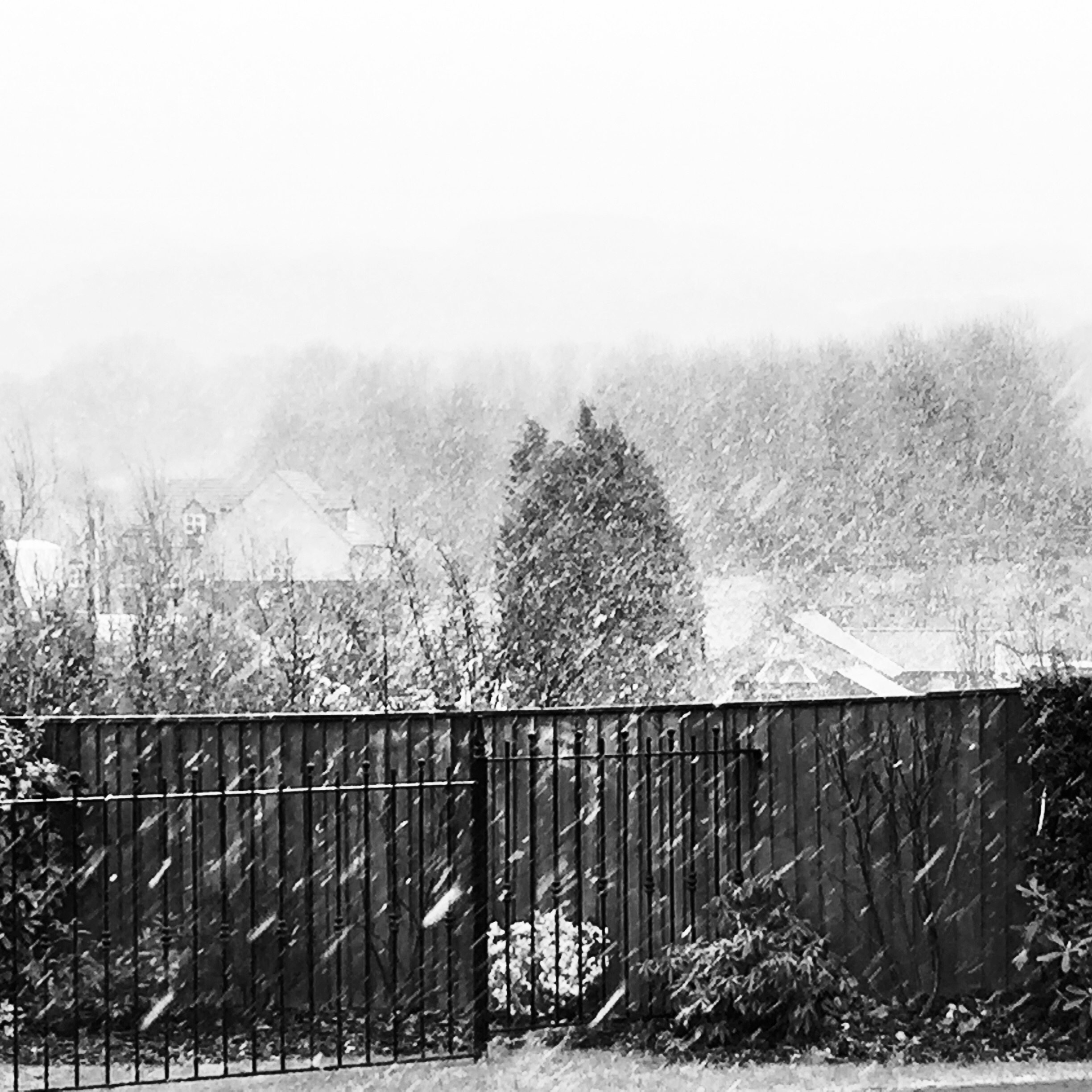 Bad weather also makes the news. Pic, view of Rivington Pike in snow, by @jabberingjourno