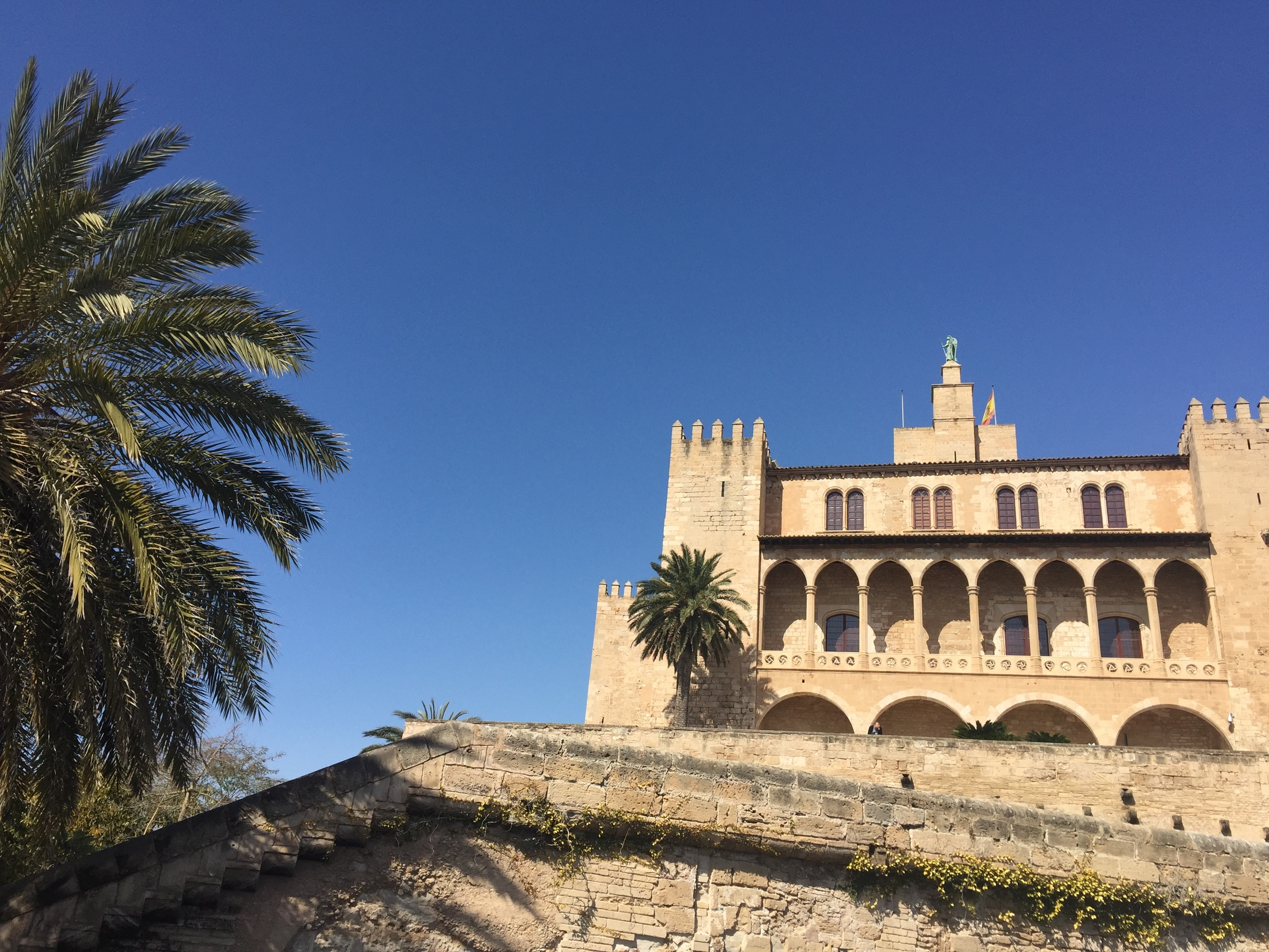 You can't argue with that blue sky.. Palma and its cathedral. Pic @jabberingjourno