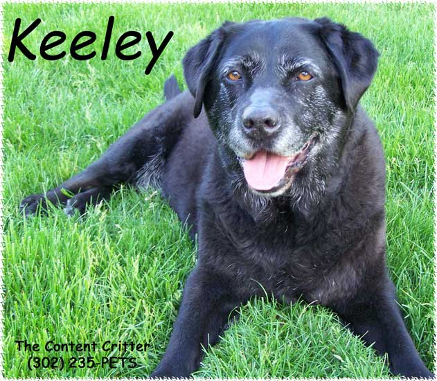 Keeley-mag-redu.jpg