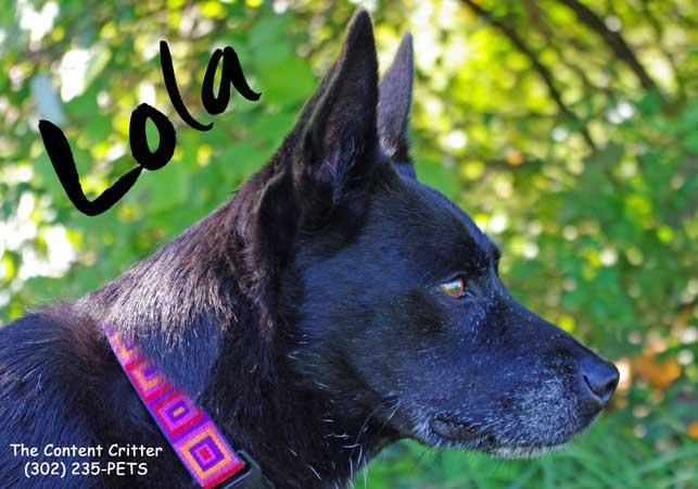 Lola 2-mag-reduced.jpg