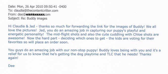 Buddy-Boxer-test-for web.jpg