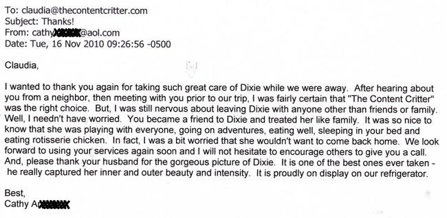 Dixie-test-reduc.jpg