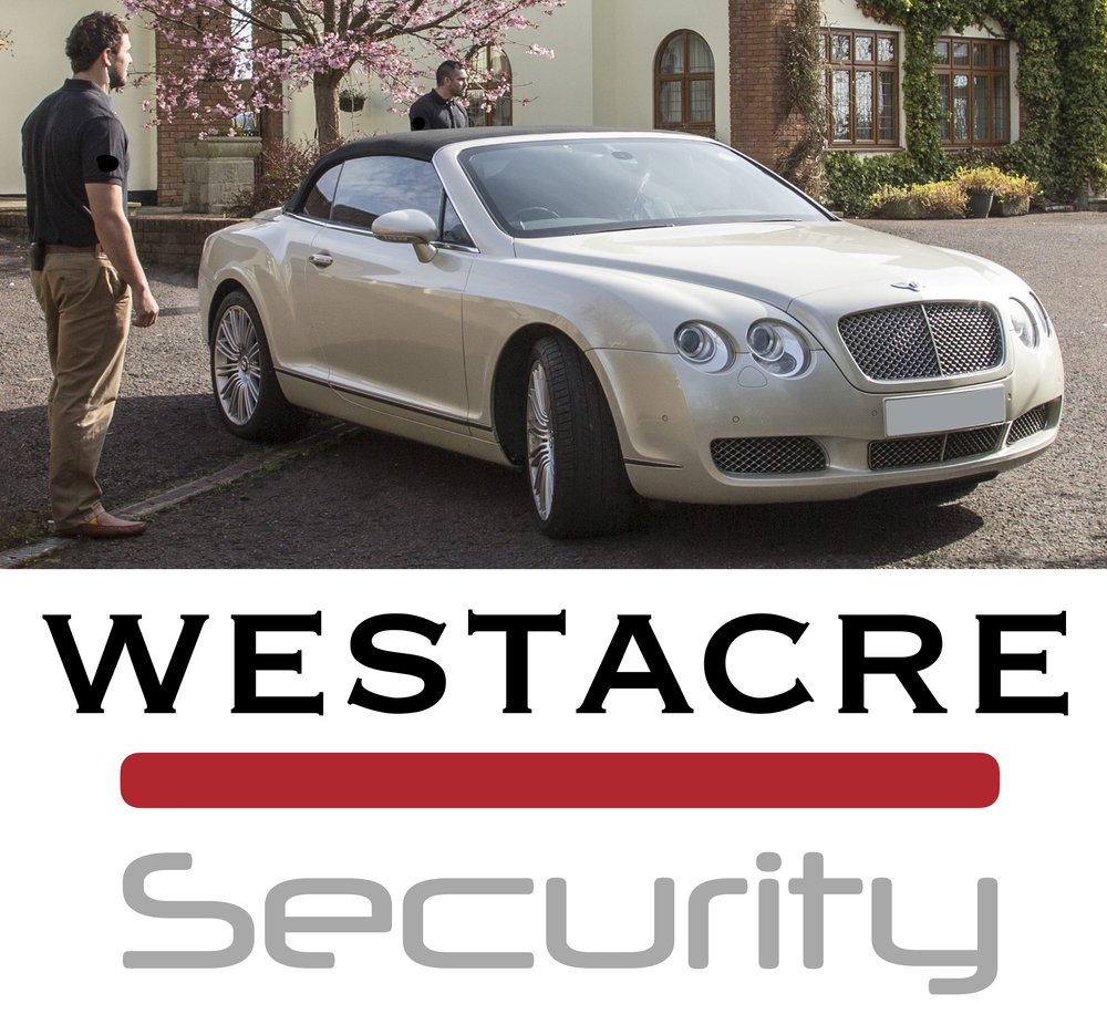IMAGE AND LOGO - SECURITY.jpg