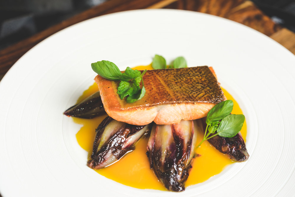 Pan Roasted Salmon | Braised Endive | Sage Mango Honey | Basil