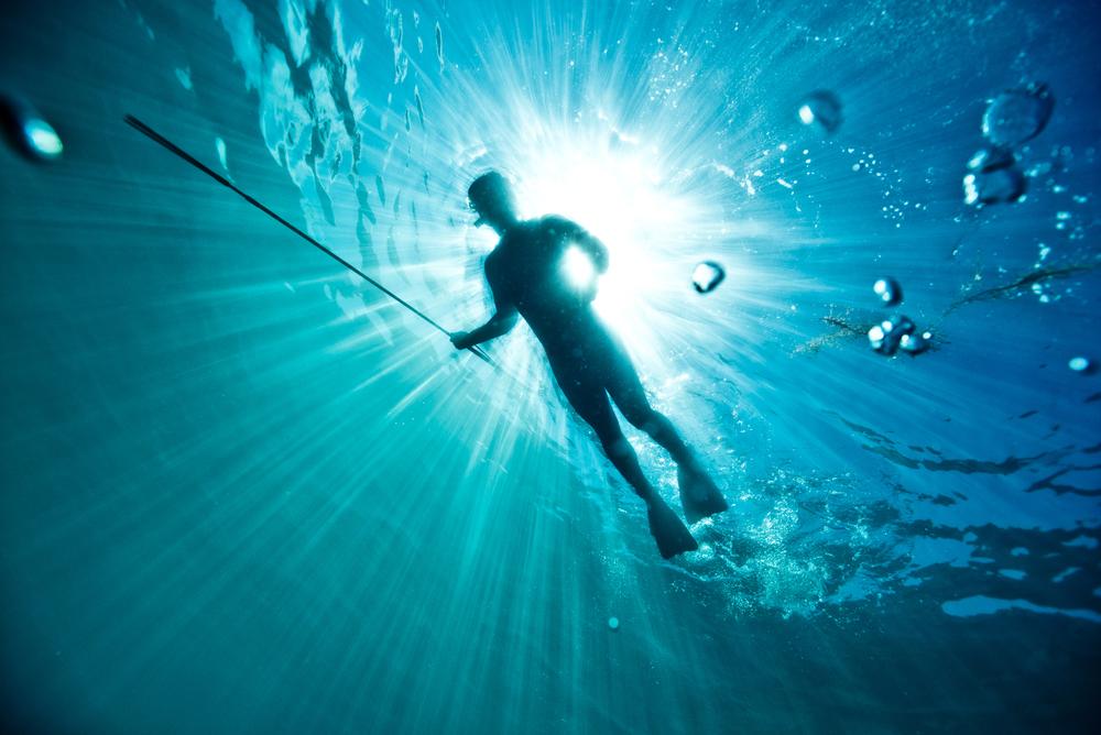 Spearfishing-6518.jpg