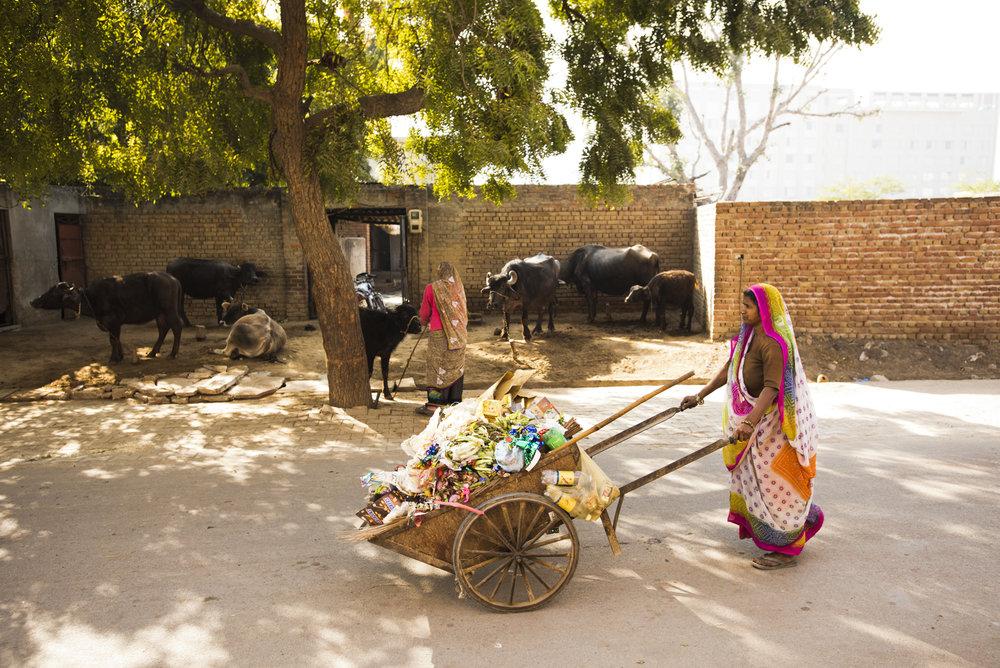 Agra-6789.jpg