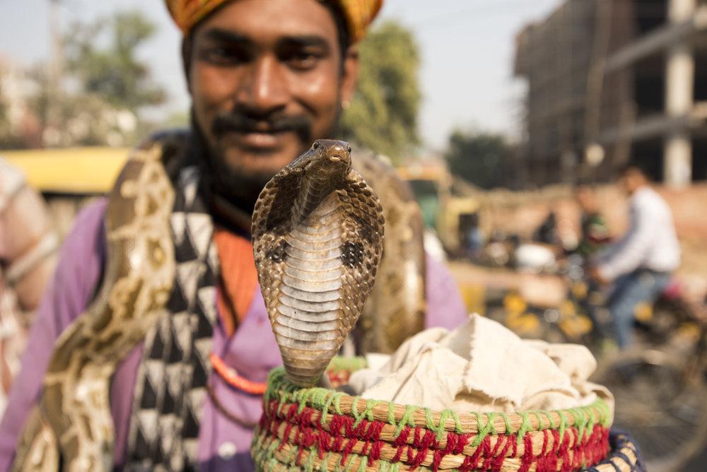 Agra-7194.jpg