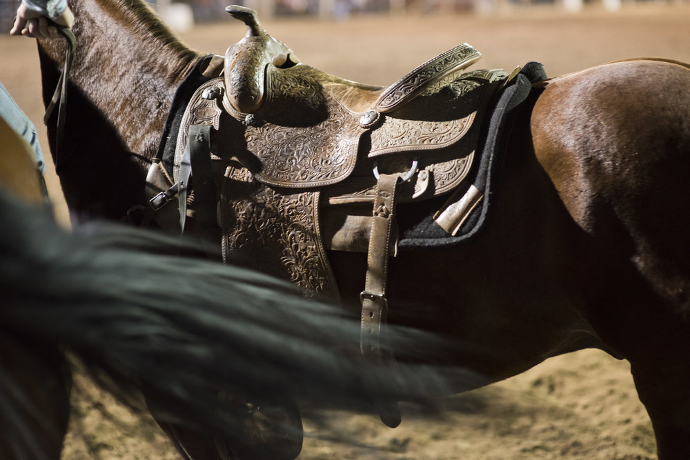 Rodeo-9170.jpg
