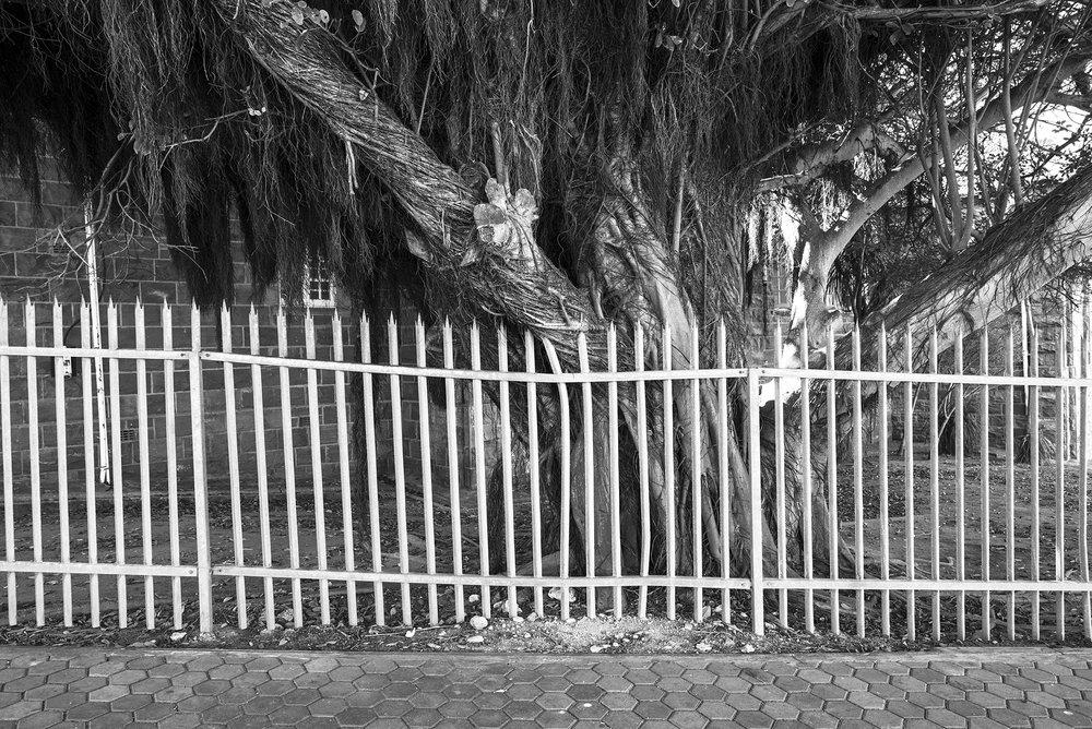 SouthAfrica-9617.jpg