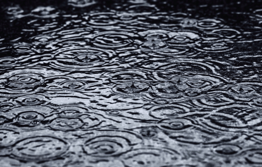All sizes | Fractal Regressions In Rain Water 002 | Flickr - Photo Sharing! 2015-01-21 15-24-36.png
