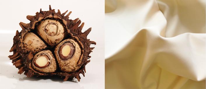 Corozo Nut      Selesia Cotton