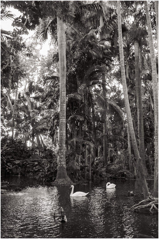 walton-house-outdoor-miami-wedding-photographer_0052.jpg