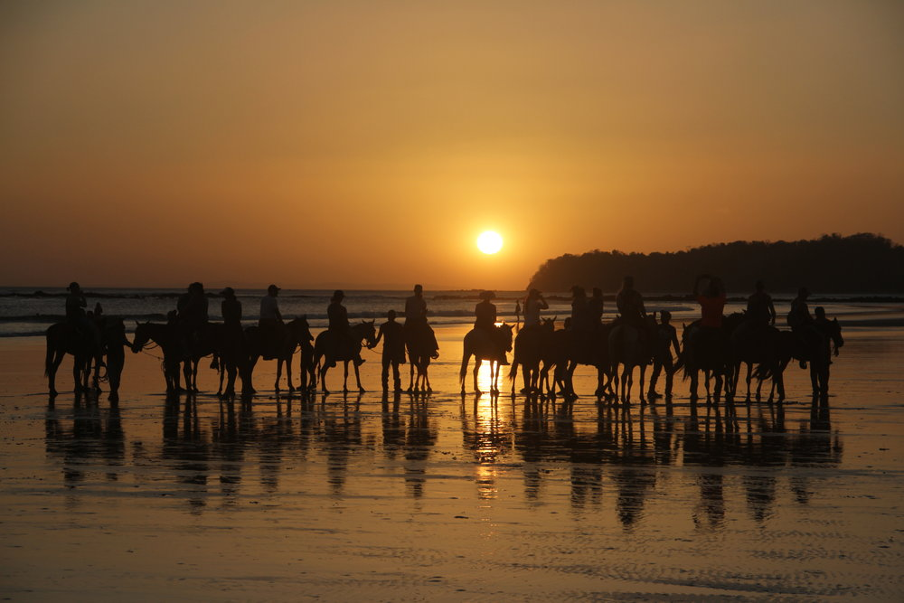 horse+riding_surf_yoga_catalina_retreats_panama+b (1).jpg