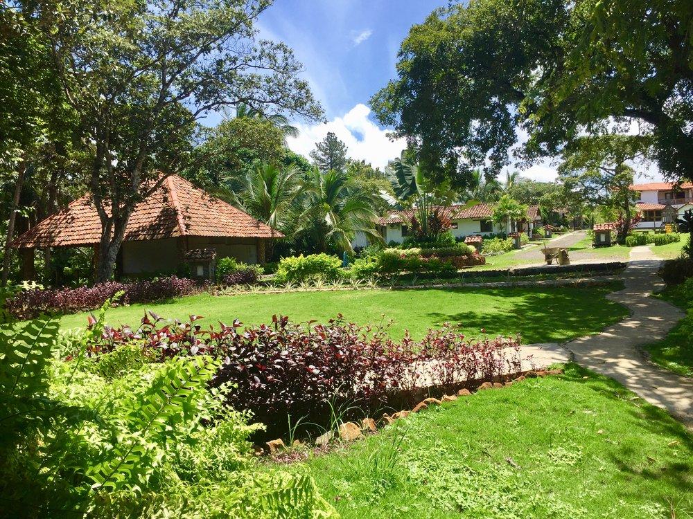 Santa Catalina Yoga Surf Wellness Retreats Panama