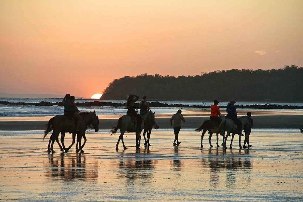 Santa Catalina Retreats Panama - Horse Riding