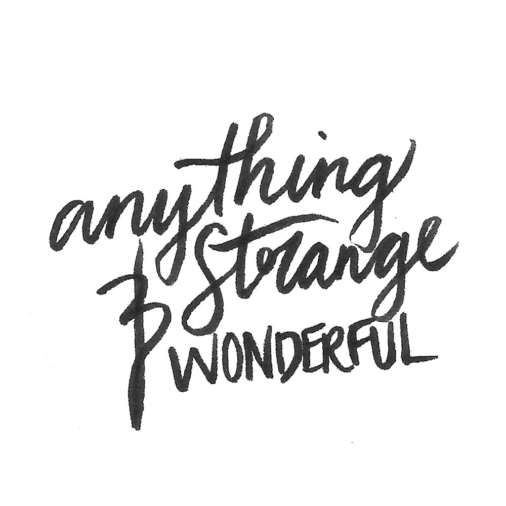 Anything Strange and Wonderful