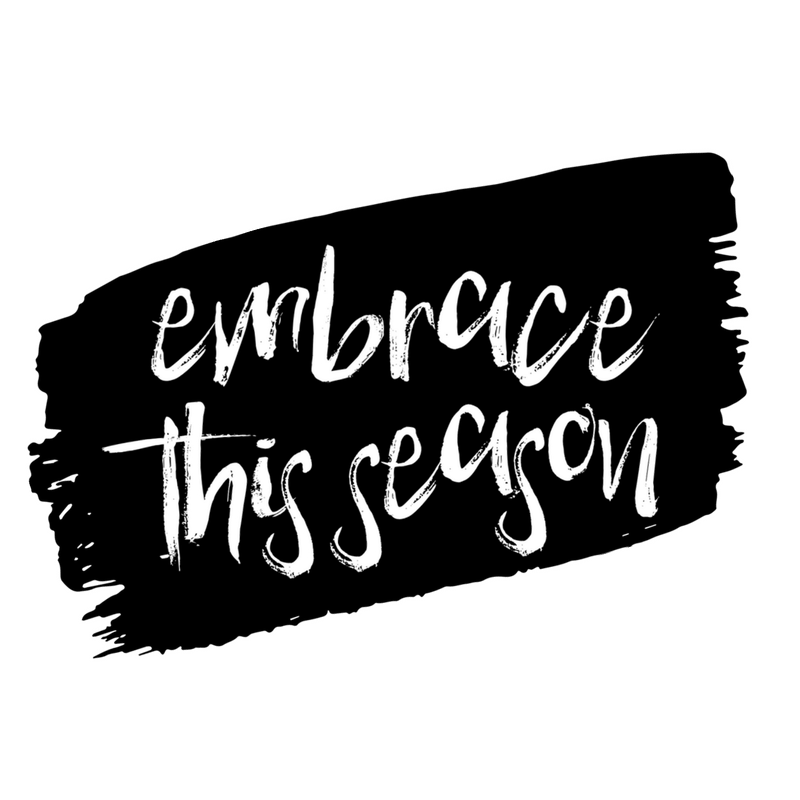 JOIN ME THIS MONTH AS I WRITE FOR 31 DAYS ABOUT                     LEARNING TO EMBRACE THE SEASONS WE FIND OURSELVES IN.