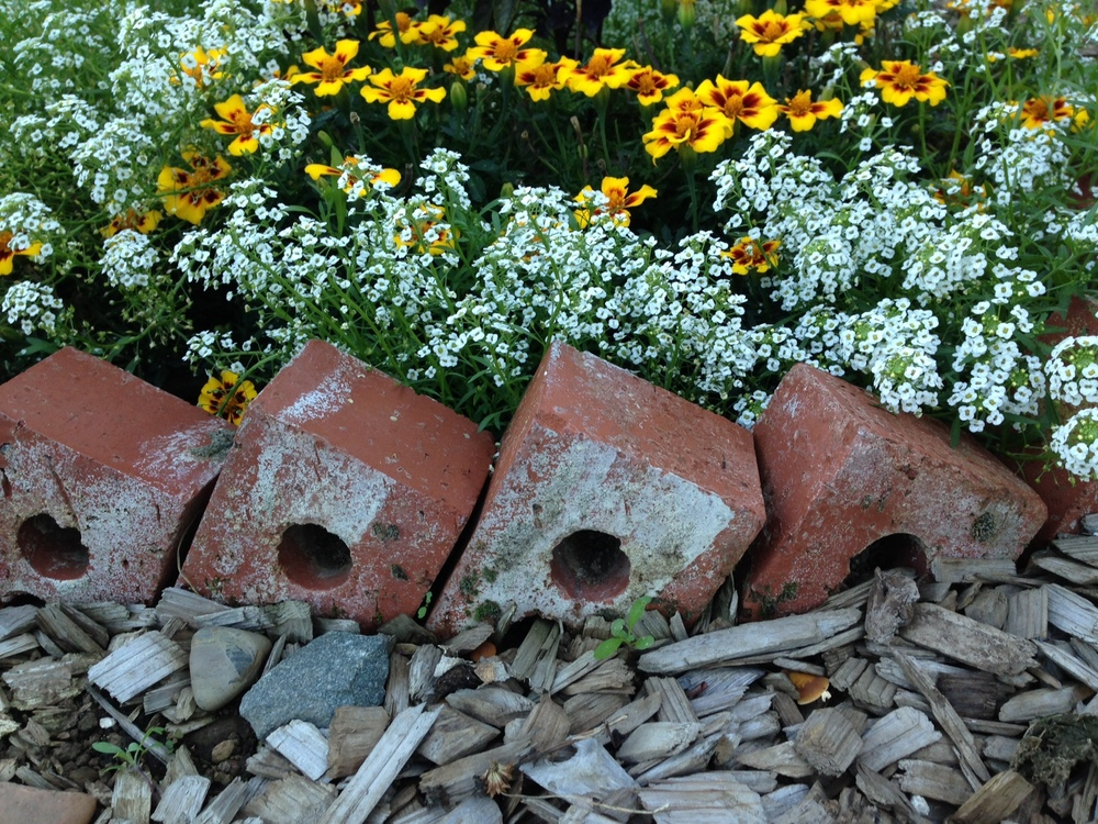 Recycled brick border at the Community Demonstration Garden