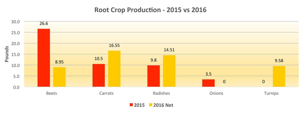 2016-DG-root-crop.jpg