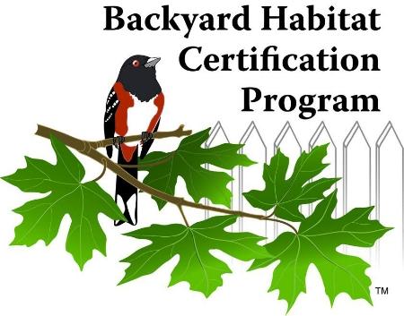 backyard-habitat.jpg