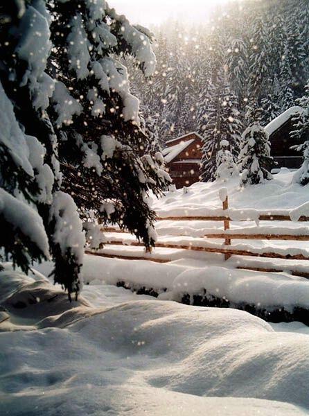 white-christmas1