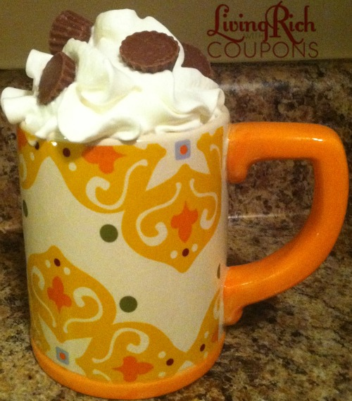 The Best Hot Cocoa Recipes for the Holidays | Nikki's Haven