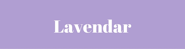 Lavendar Color Corrector | Nikki's Haven