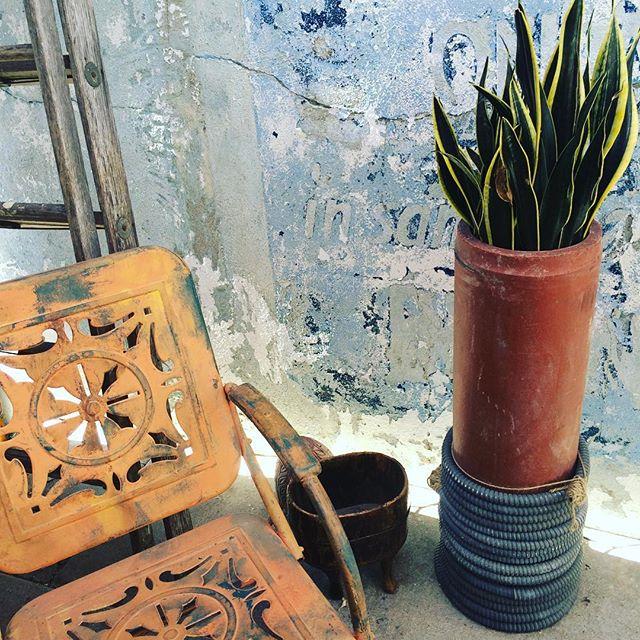 True grit. #texture #grit #colorpalette #vintage #patio #vintagestyle #inspiration #washedout #indigo #terracotta #plants