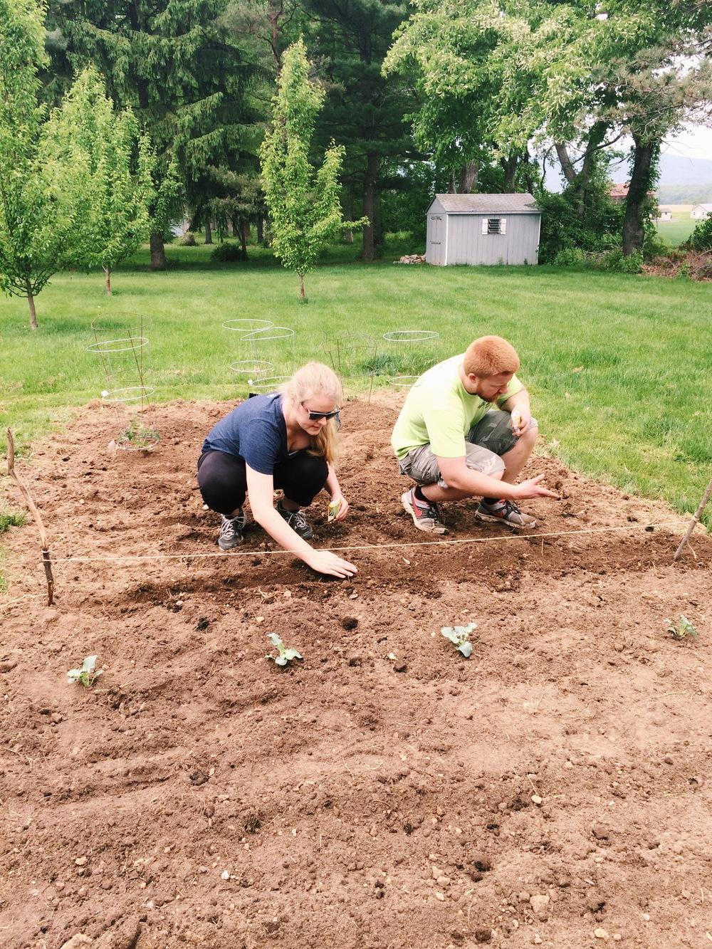 Our first garden!!