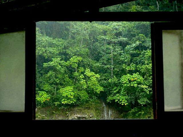 Our first home in the jungle. We got off our boats into a house lying on the top of the river, with the most beautiful views of the jungle in every direction and in every window. Every window looked upon the perfect jungle frame. 📷: @kyle.mcb
