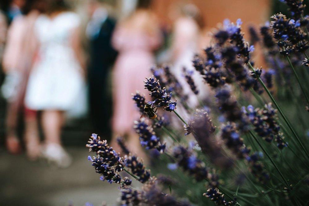 Festival-wedding0120.jpg