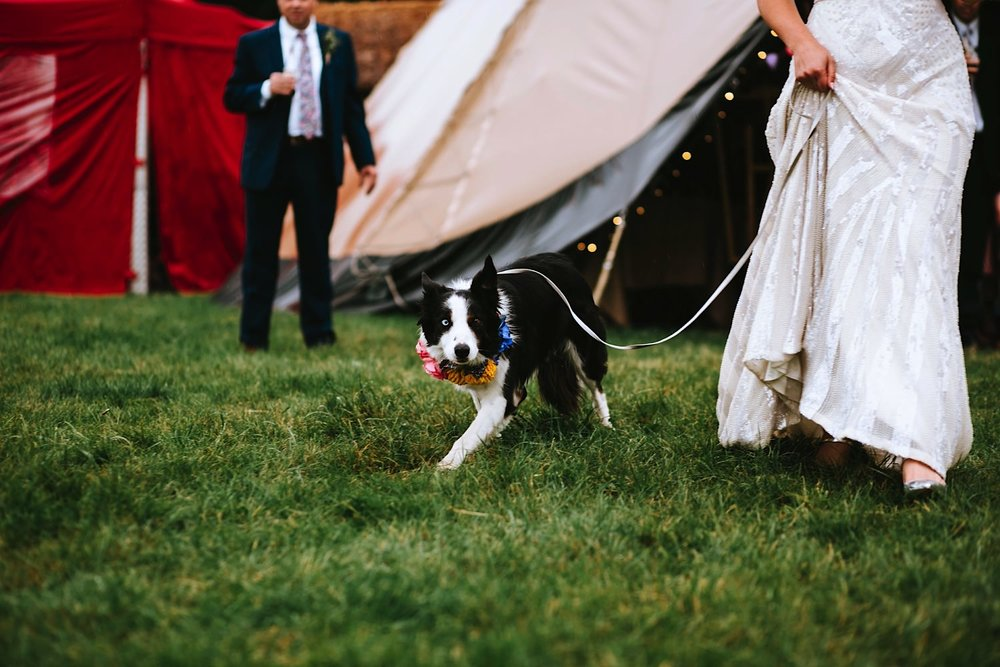 Festival-wedding0155.jpg