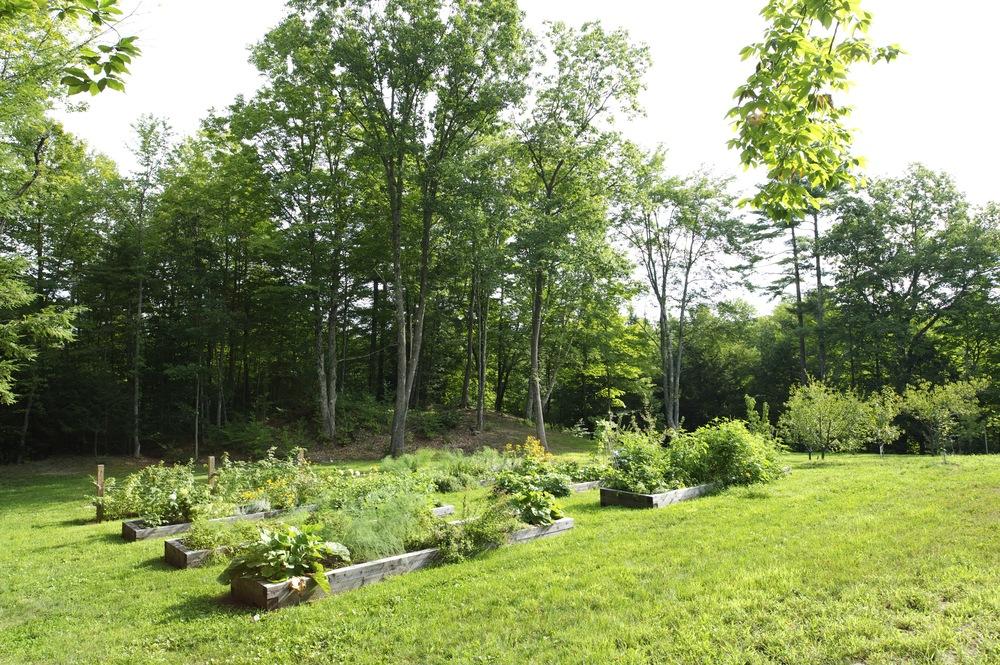 R:S Garden Shed 000.jpg