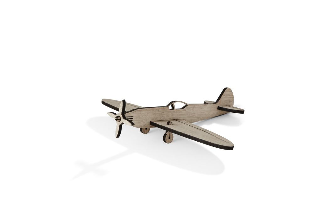 Plane No.1 b.jpg