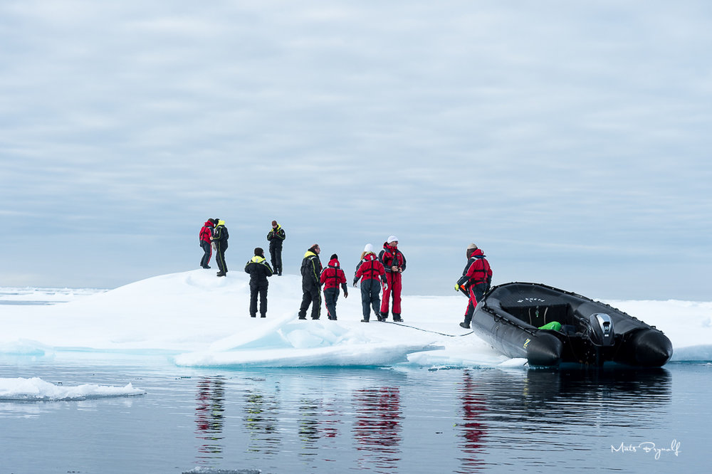 Zodiac tour on the artic ocean