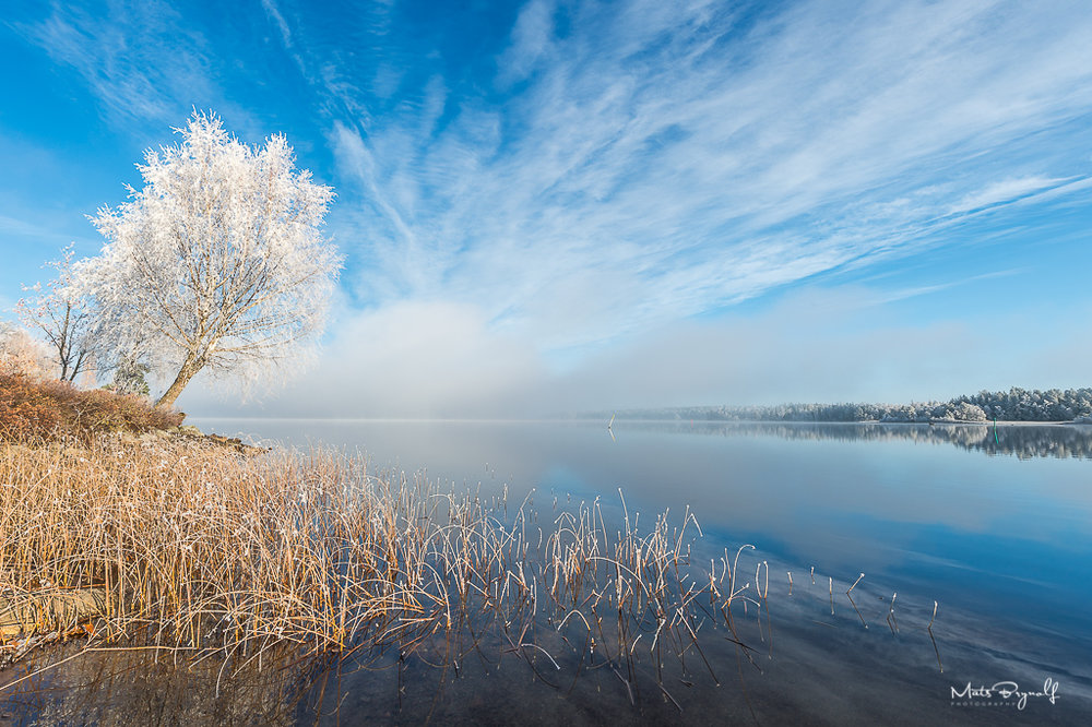 This was one of those days that there was a very special weather condition. Mist, high clouds, frost and very cold.   f11, 1/100sec, ISO 100