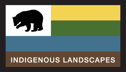 Indigenous Landscapes