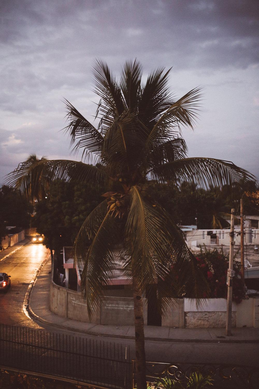 KDP_haiti17_website-2.jpg