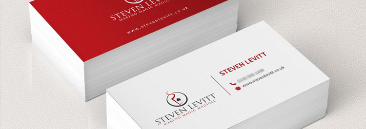 Steven Levitt Business Cards