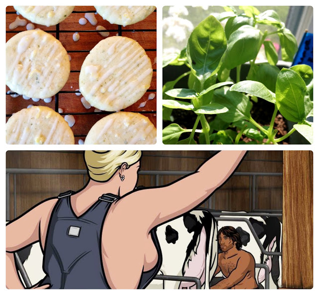 "my cookies, my basil and yes if you google image ""milk milk lemonade"" you get a side boob of pam from archer"