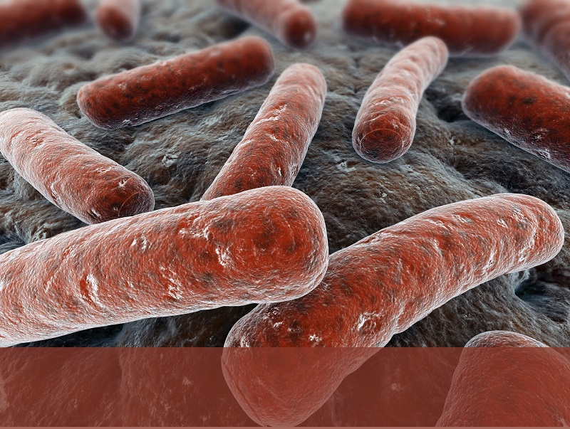 250,000 require hospitalization, and 14,000 die each year from Clostridium difficile.
