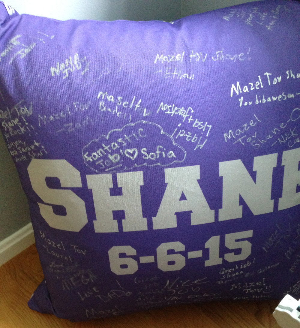 SHANE'S DARK PURPLE PILLOW