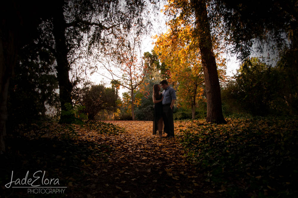 JadeEloraPhotography-Blog-Engagement-25.jpg