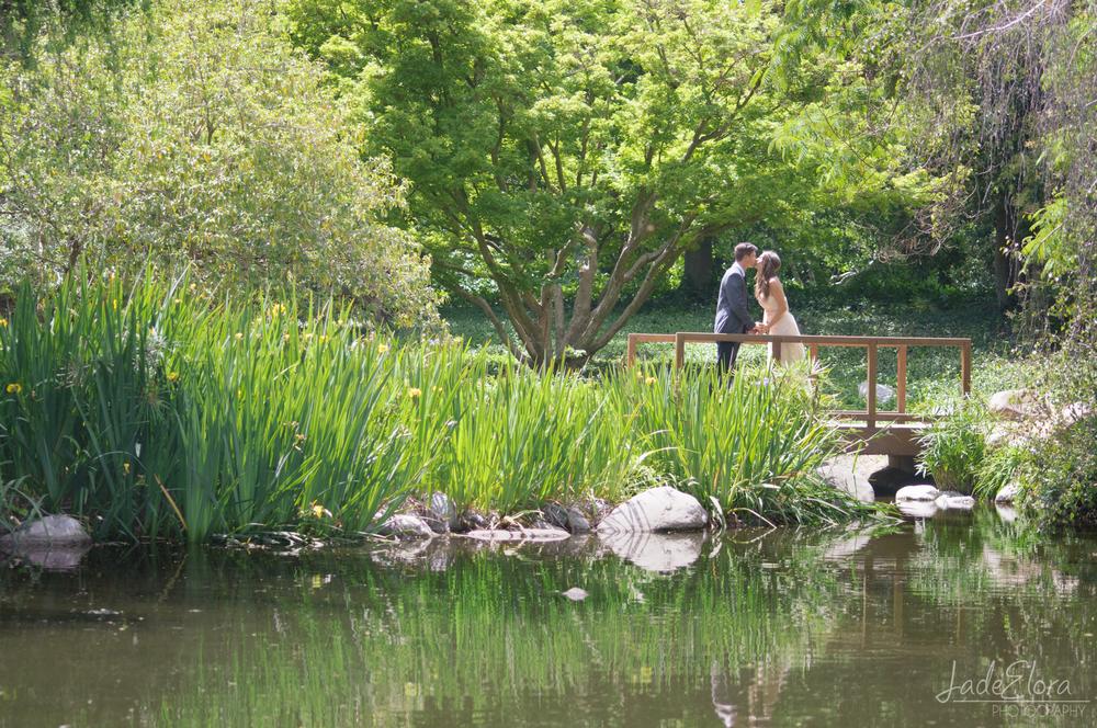 LA Arboretum Pond Wedding Portrait