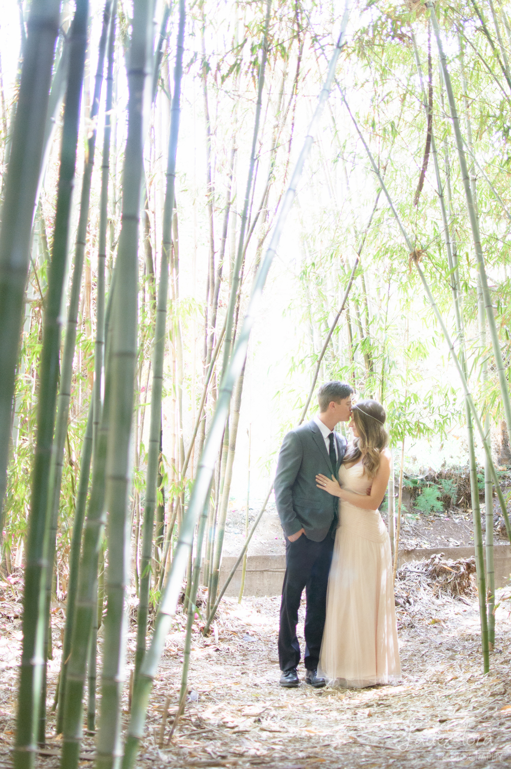 Wedding Couple Portrait in Bamboo Forest