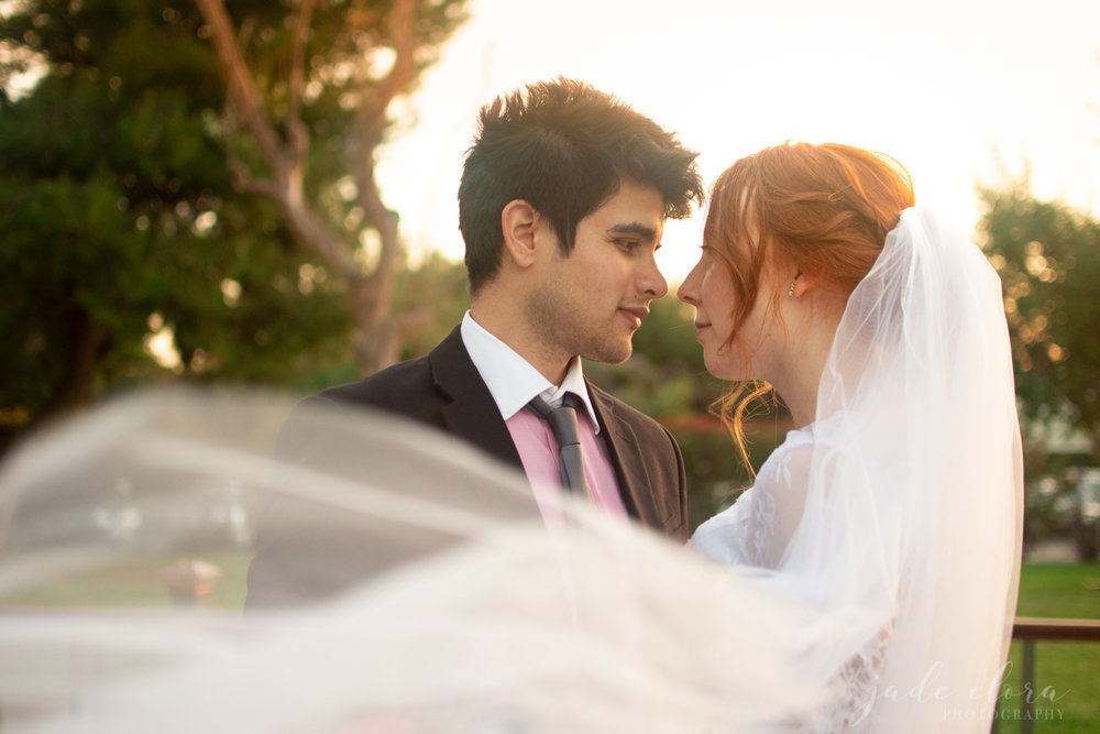 Flowing Veil Orange County Wedding Portrait