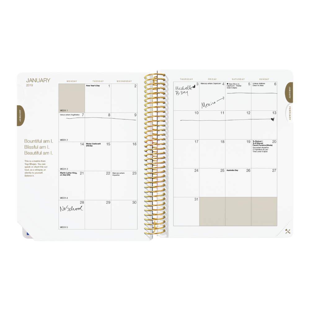 2019Planners.PlannerToolkitPage_Daily.Ltd.Month.png
