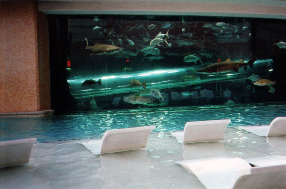 sharktank 1.jpg